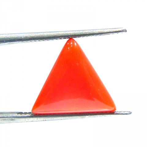 Italian Coral  (7 Ratti or 4.20 ct)(Moonga)